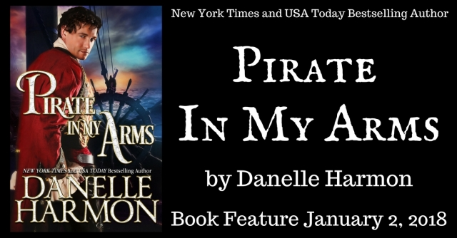 Pirate In My Arms Banner