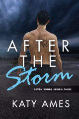 AFTER-THE-STORM-Seven-Winds-3-by-Katy-Ames-e1513298710860