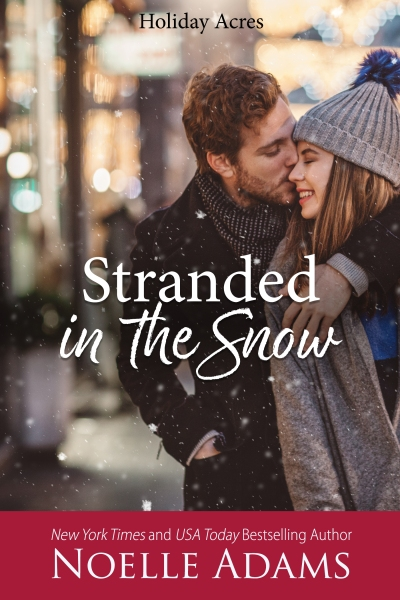 Stranded in the Snow2.jpg