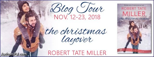 The Christmas Layover Tour Banner