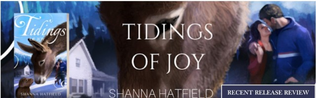 BANNER_Tidings of Joy