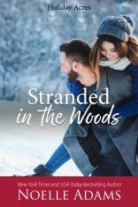 StrandedintheWoods2