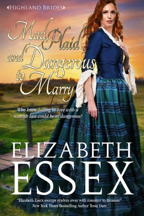 mad, plaid and dangerous to marry cover