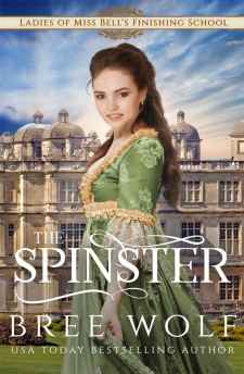 the spinster cover