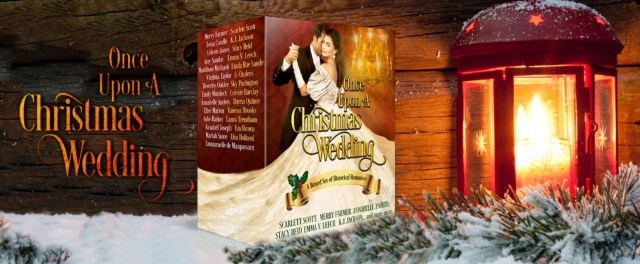 Once Upon a Christmas Wedding banner