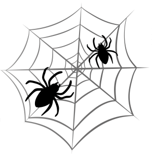 spider-web-transparent-png-17