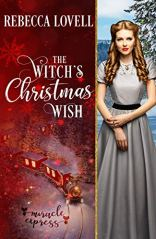 The Witch's Christmas Wish book 9