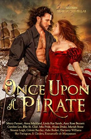 Once Upon a Pirate Cover